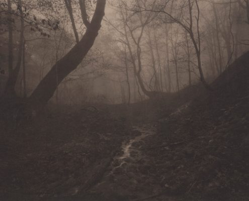 Silent Respiration of Forests. Kanegasaki Komagatake #5, 2005. Platinum print on Gampi paper. Es. 7:9. cm 20,3x25,4