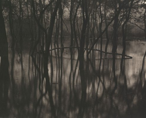 Silent Respiration of Forests. Toyosawa Lake #1, 2009. Platinum print on Gampi paper. Es. 6:9. cm 20,3x25,4