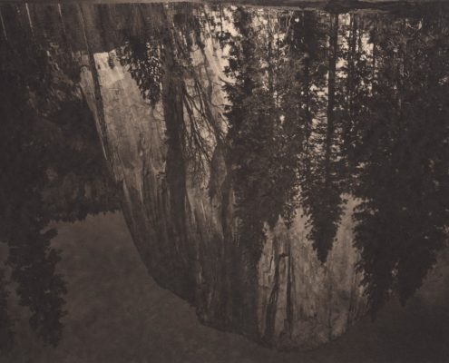 Silent Respiration of Forests. Yosemite #21, 2011. Platinum print on Gampi paper. Es. 7:9. cm 26,5x34